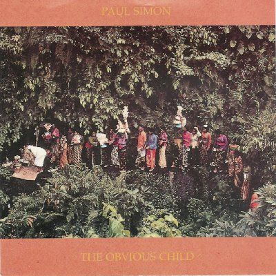 Paul Simon The Obvious Child album cover